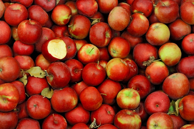 sweet red apples, interrupted | Clue: Taken in SE this ...