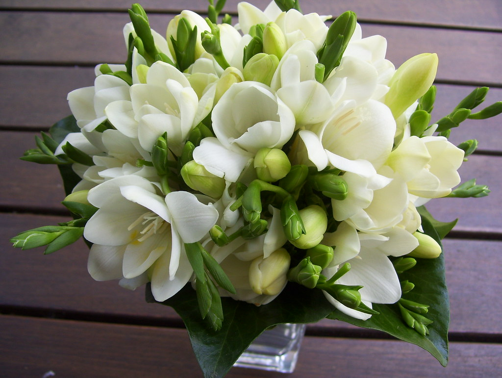 white freesia wedding bouquet p31 natu flickr. Black Bedroom Furniture Sets. Home Design Ideas