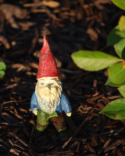 tiny gnome DSC_1501 | by I Should Be Folding Laundry