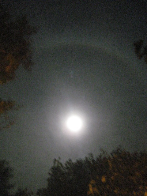 What Album Is Ring Around The Moon