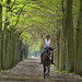 Enjoying the woods on a horseback