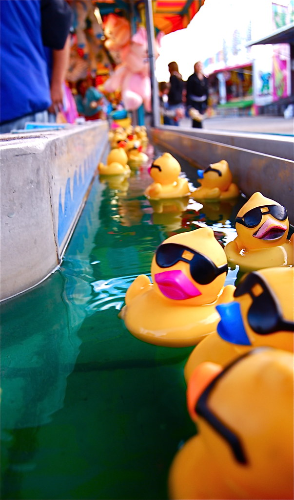 Rubber Duckies There Are 5 Types Of Rubber Ducks