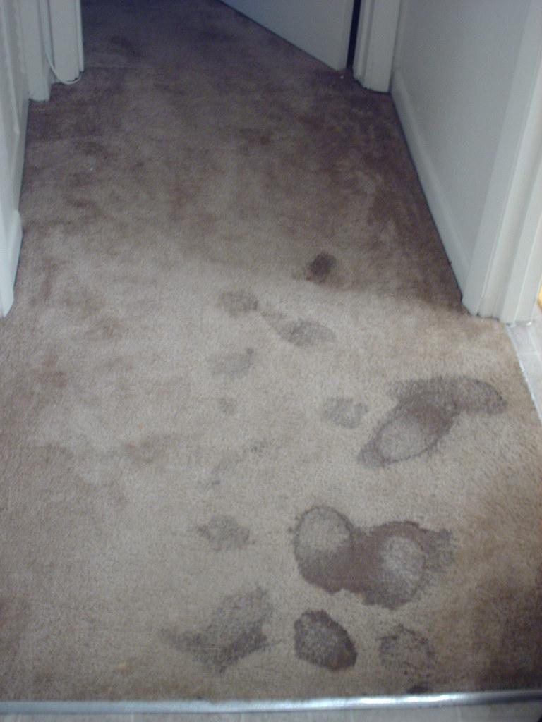 Image Result For White Washed Bedroom