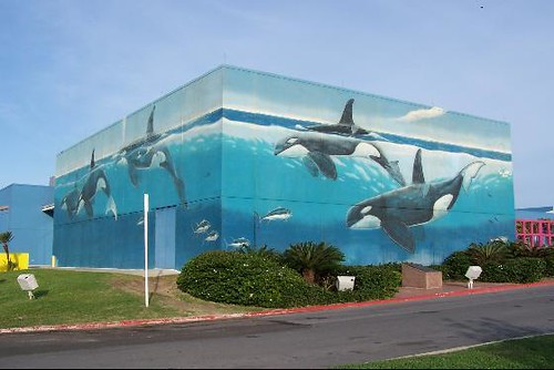 Whaling Wall South Padre Island