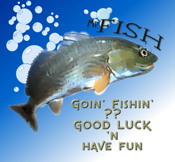 mr fish goin 39 fishin 39 good luck 39 n have fun mr fish