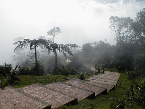 Parque Natural Monta 241 As De Chicaque Bosque De Niebla Flickr