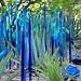Chihuly Exhibit - Blue garden - Desert Botanical Garden