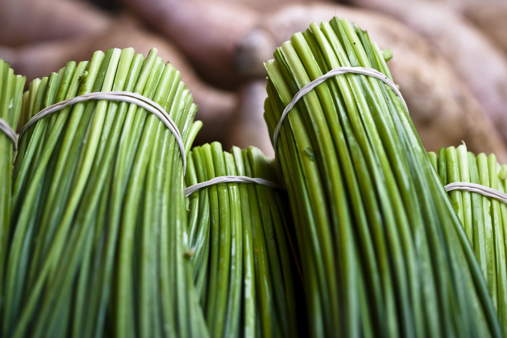 Chives | A visit to the farmers market. | a.pitch | Flickr