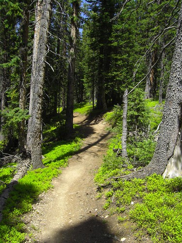 Single Track at Copper Mountain - Colorado | by A_N_D_R_E_A_S