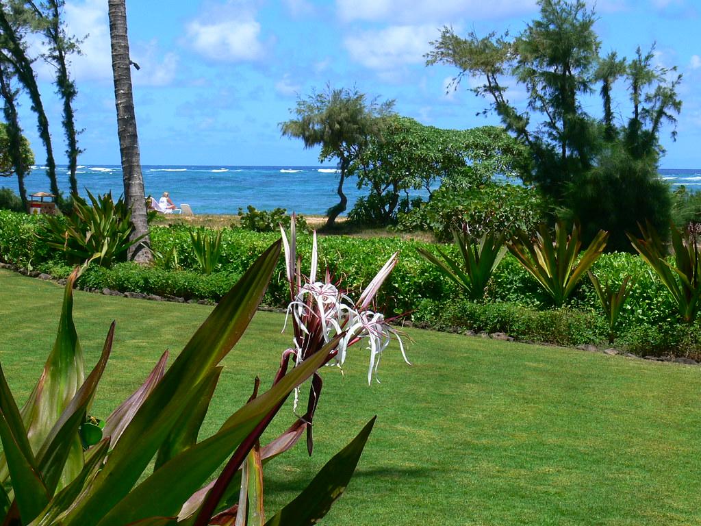 Waipouli Beach Resort Condos For Sale