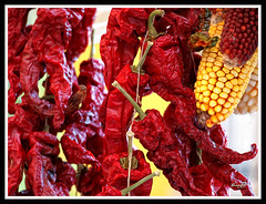 SECANDO PIMIENTOS - DRYING PEPPERS