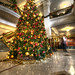 Stephen F Austin Hotel Christmas Tree