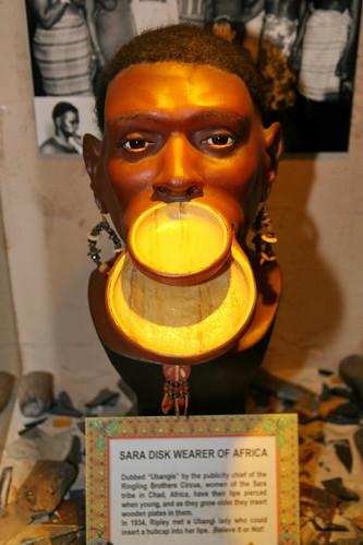 3281504061 527905c2e6 Sara (Kameeni) People: The Ancient Sun Worshiping People Of Africa