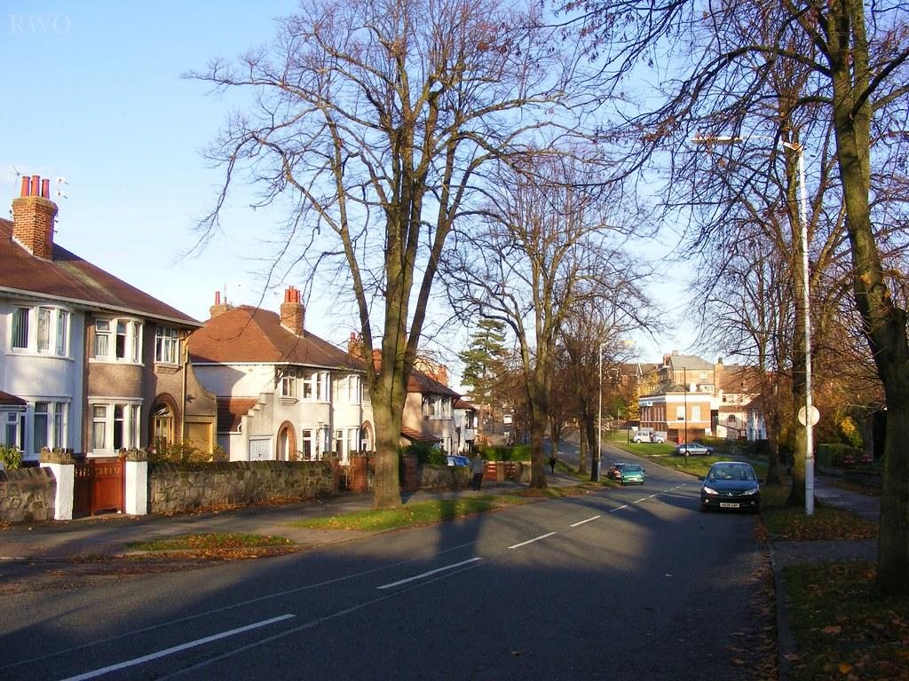 Old Kings Lane