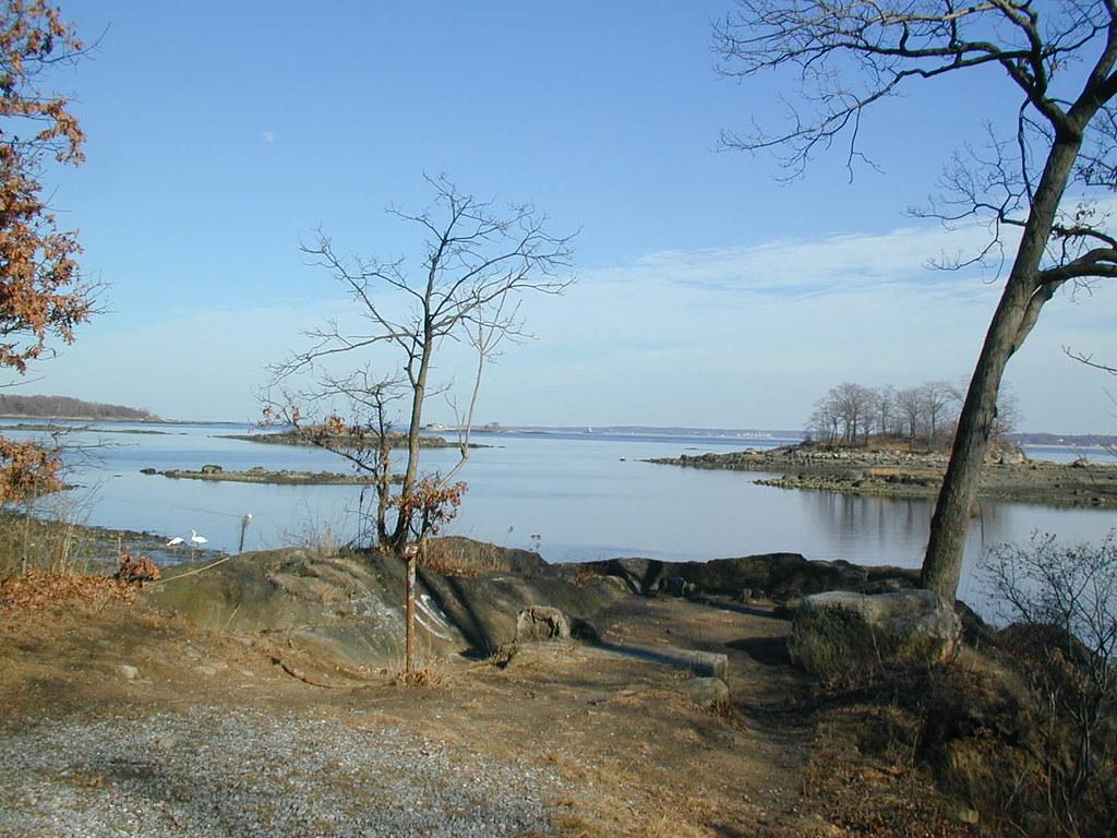 Pelham Bay Park Nature Walk