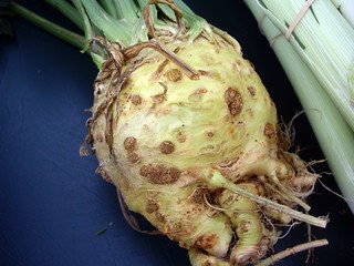 Celeriac | by swampkitty
