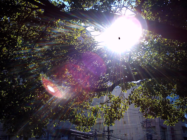 sun shower  Flickr  Photo Sharing! # Sunshower Mori_014230