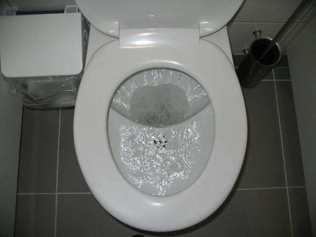 Ud Flush Toilet During Flushing Oct 2006 Photo By E V