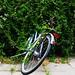Bush Eats Bike