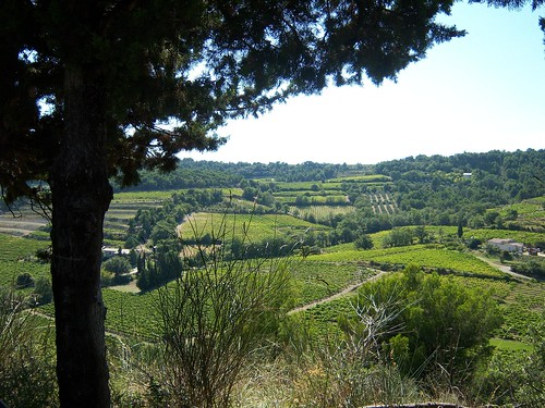 View On the Climb to Vinsobres