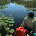 green canoe trail, durdin prairie, okefenokee national wildlife refuge, charlton county, georgia, brian killingbeck 1