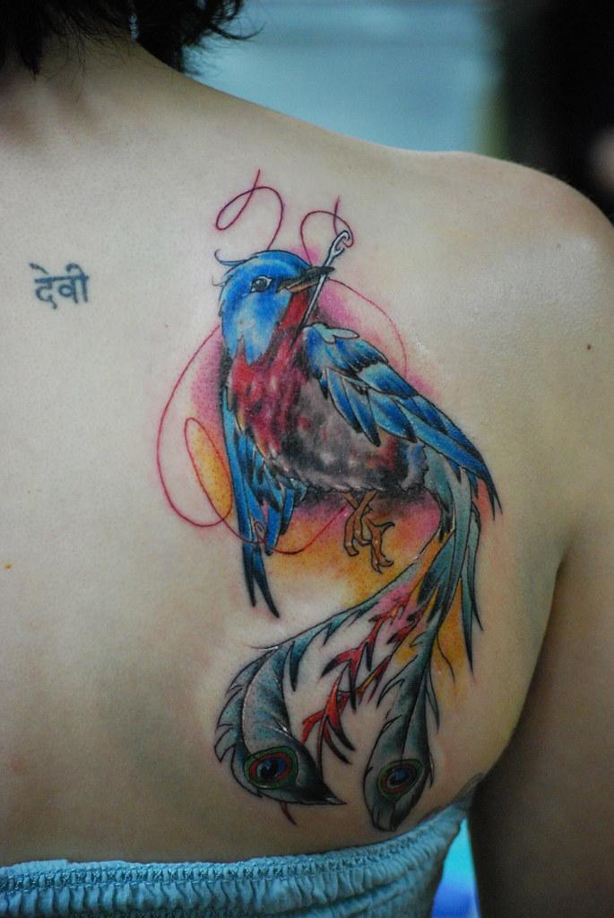 Robin phoenix :) | A softer, robin style phoenix type