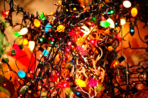 doom does not like christmas lights they are always tangled and half the strings never work doom does not understand the fascination with them - Tangled Christmas Lights