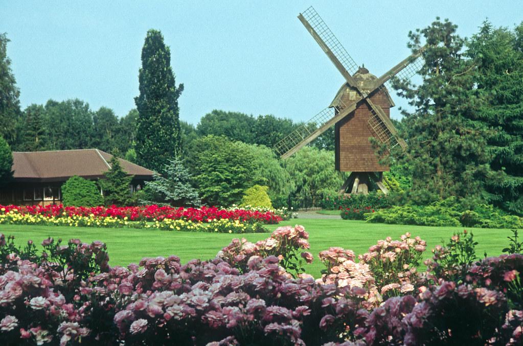 single walsrode Baden-Baden