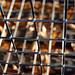 Caged in...dia doscientos quince