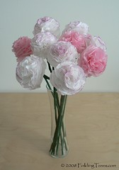 tissue paper carnations | by planetjune