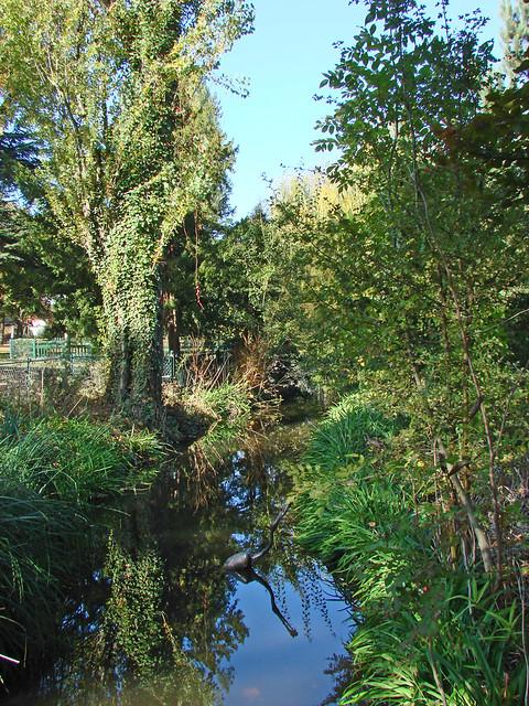 Le jardin d 39 acclimatation paris le jardin d for Le jardin 3d