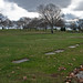 Block 17, Beth Israel Cemetery, Woodbridge, New Jersey, 18 Nov. 2008