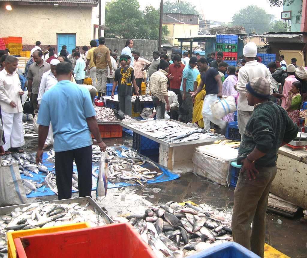 Fish Market The Great Chaos At The Pune Fish Market