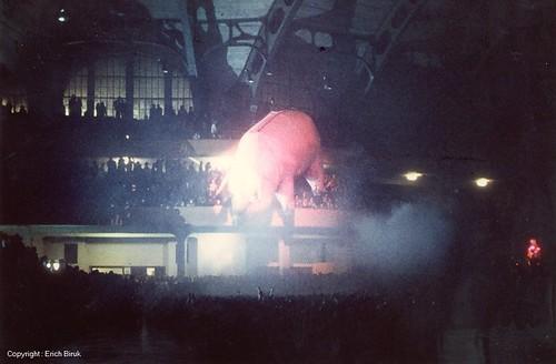 1977 - Pink Floyd - The Sau is flying by - still