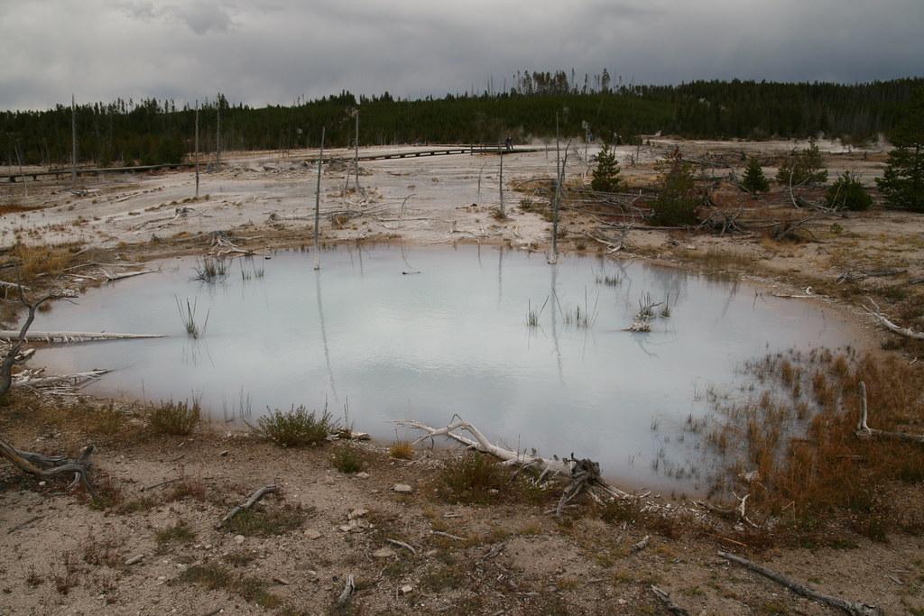 Norris geyser basin a bluish milky white pool of water for Milky white pool water