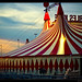 Zirkus - circus