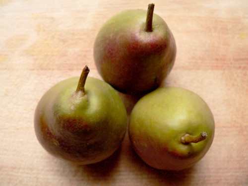 Greenmarket Saturday: Seckel Pears | by ahemler