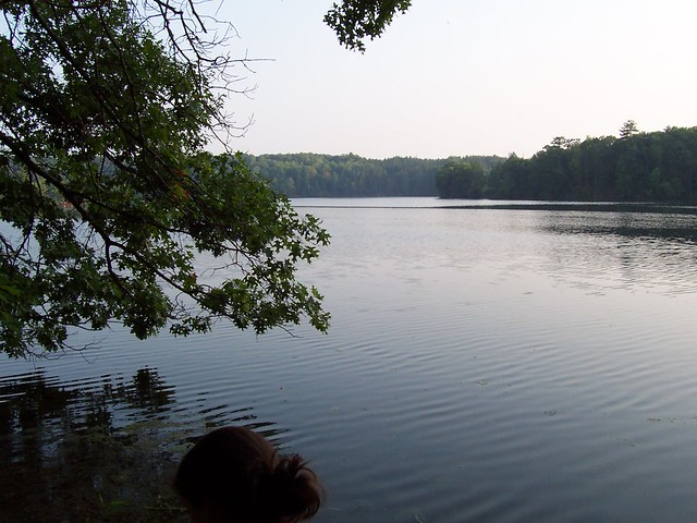 Tippy dam matt 39 s favorite place to go fishing camping for Tippy dam fishing