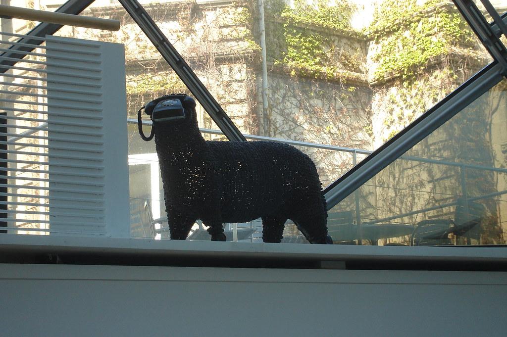 baa baa black sheep museum f r kommunikation frankfurt g katasta flickr. Black Bedroom Furniture Sets. Home Design Ideas