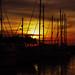 Bon Voyage 2008