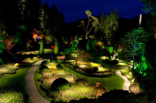 Garden Night