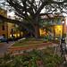 Small park in front of Hotel El Convento