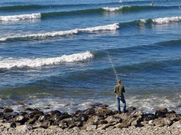Fishing on the oregon coast mile post 20 0 surf for Oregon free fishing