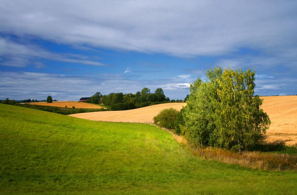 Image Result For Beautiful Landscapes