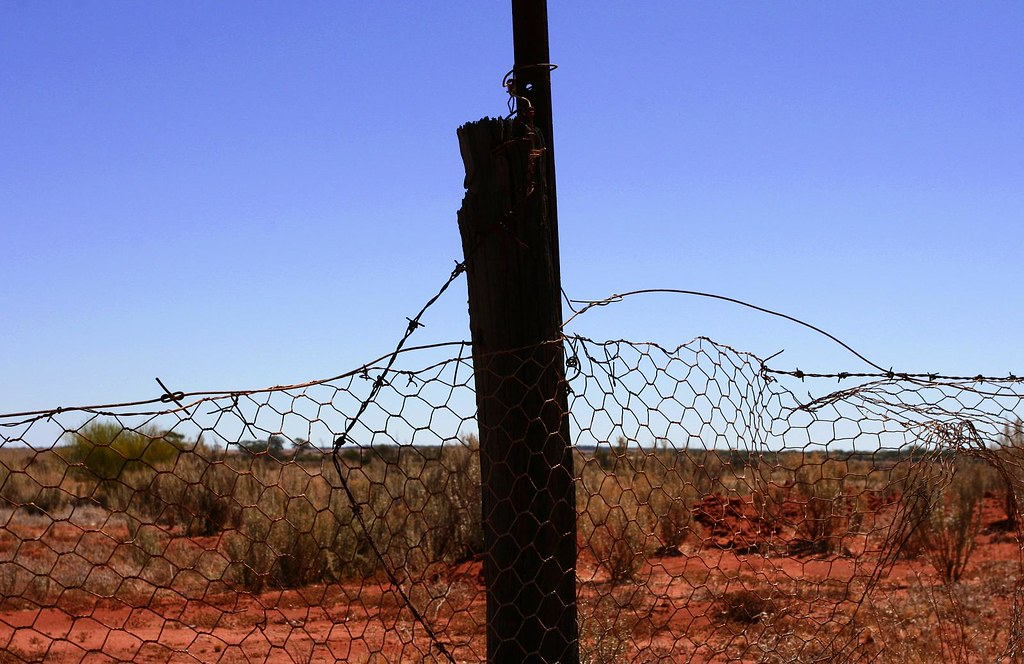 rabbit proof fence motif Global film studies guide 1: rabbit-proof fence a film by phillip noyce author: dice project here the use of the fence as a motif in the film should be.