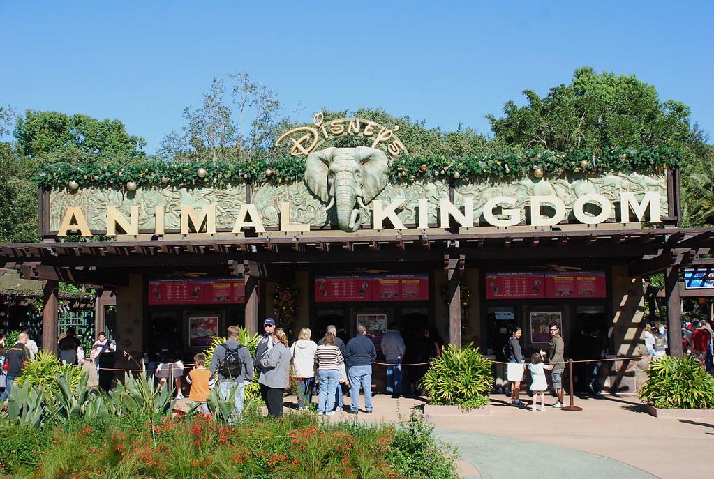 Disney S Animal Kingdom Entrance Gate Disney S Animal Kin Flickr