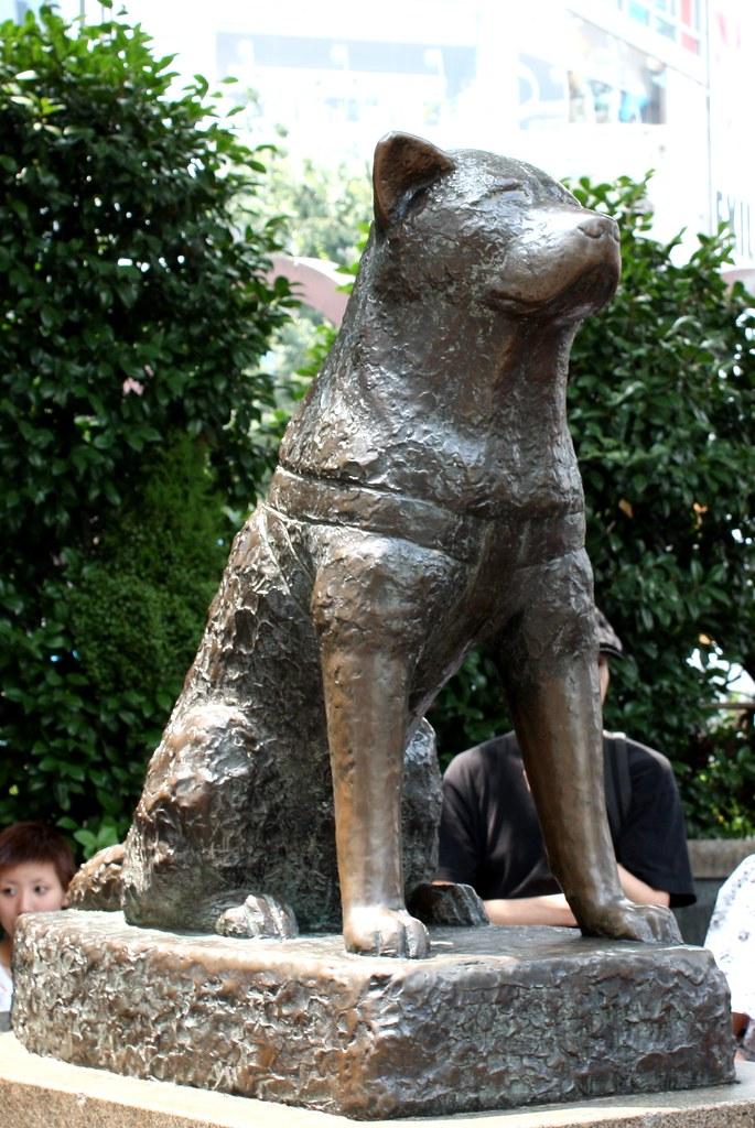 "Hachiko Statue, Shibuya, Tokyo | 27 July 2008 ""Hachikō was ..."