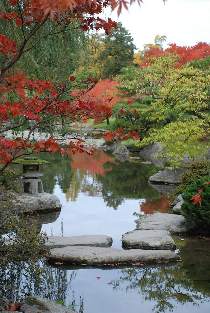 Seattle Japanese Garden-WA Park Arboretum