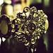 Jeweled Bracelet...