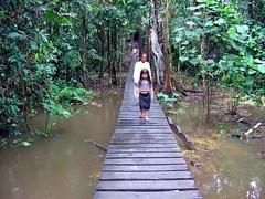 Bridge into the central area